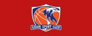 adion basketball